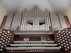 small picture of organ